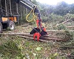 Preço cabeçote florestal para tratores