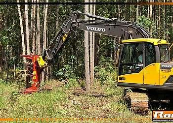 Cabeçote florestal para colheita e corte