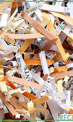 Destruição de processos arquivados