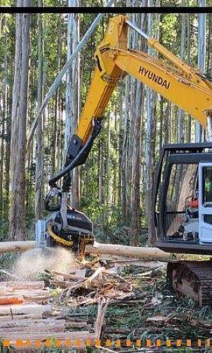 Harvester florestal