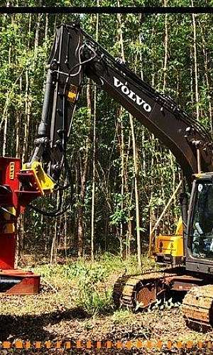 Implementos florestais a venda