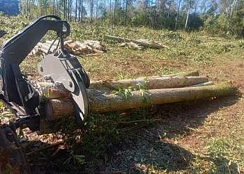 Preço pinça florestal
