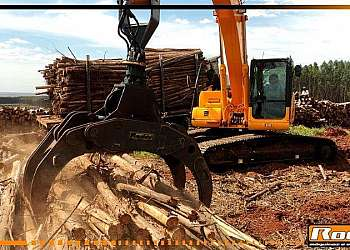 Venda pinça florestal para máquinas