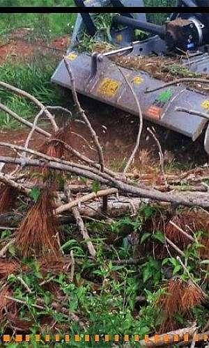 Triturador florestal para trator