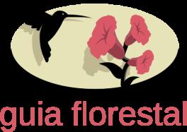 Guia Florestal